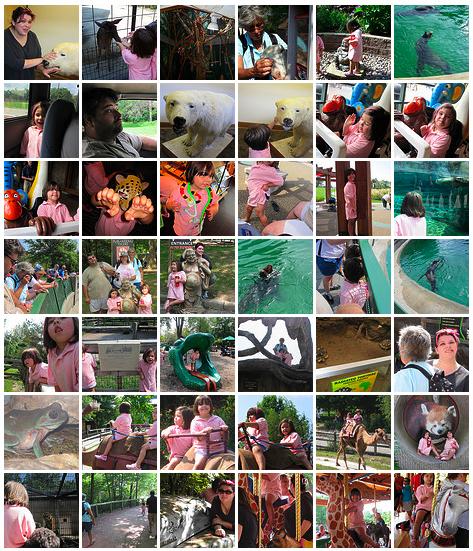September 2009 Zoo Trip on Flickr